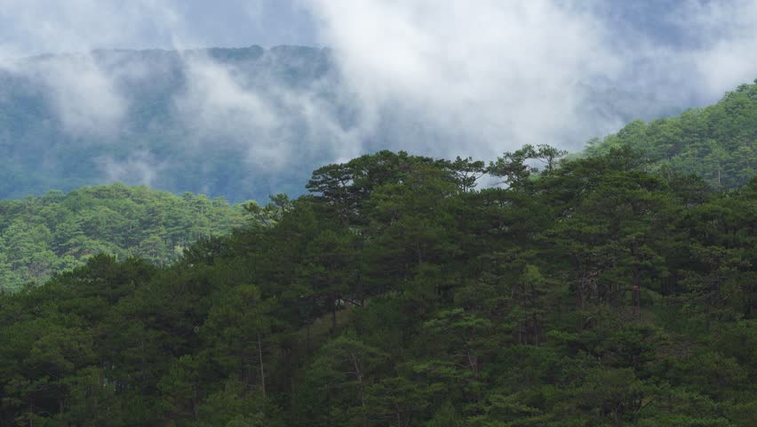 Cloud In The Mountain   Shutterstock HD Video #18028462