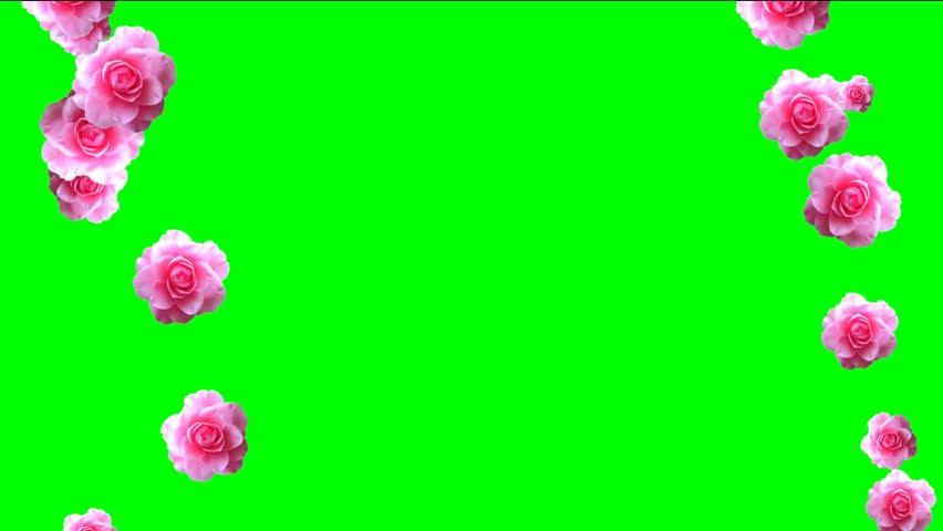 Animated Petals Video Frame for Stock Footage Video (100% Royalty-free)  18117532 | Shutterstock