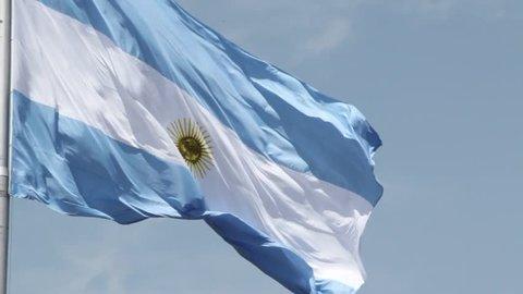 Argentina Flag Waving. Argentine Flag.