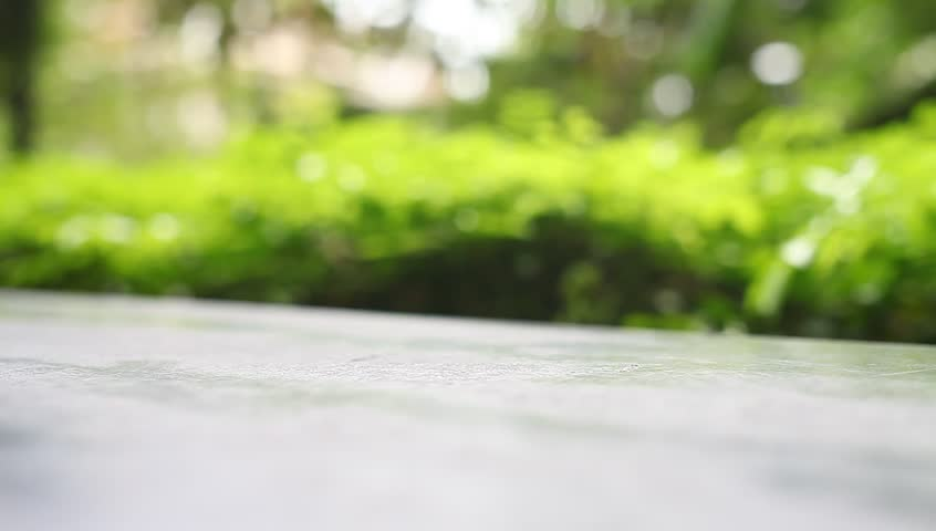table top background hd. on the bench at nature blurred background - hd stock video clip table top hd i