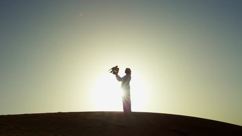 Sunset silhouette Arabic man with bird of prey on desert sands