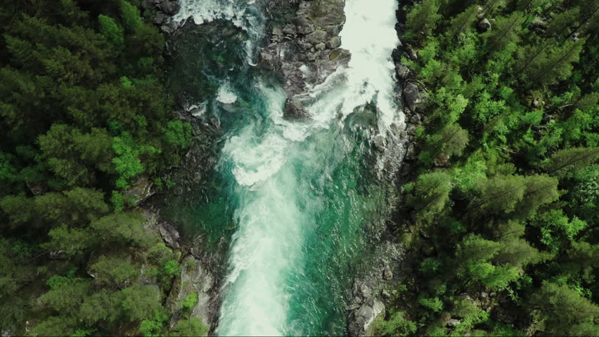 Top Down View Of Fast Moving River With Rapids Surrounded By Pine Forest