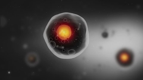 Human cell with nuscleus animation