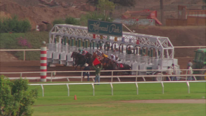 day horse race Hollywood Park rake of a horse race with the horses coming out of the gate. Can work as playback