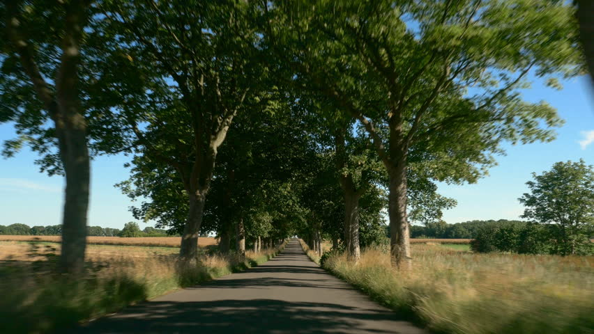 Driving on a road with trees. Sunlight and Shadows. Europe, Germany. POV. Clip contains avenue, sunny, countryside, car
