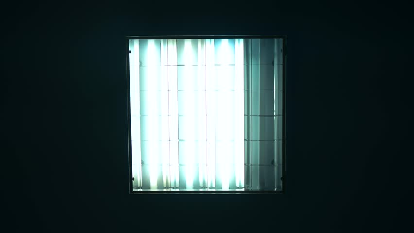 Fluorescent lights turning on and off | Shutterstock HD Video #19189402