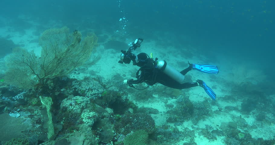DSLR underwater photographer taking images, photographing on coral reef in Solomon Islands, 4K UltraHD, UP35209