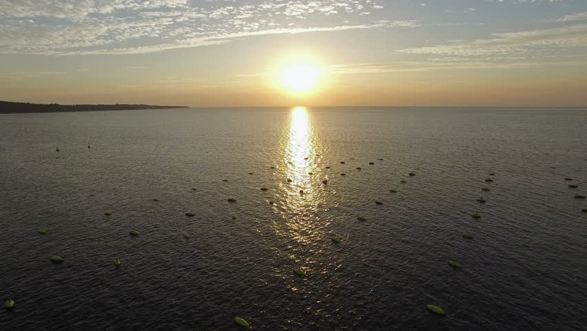 4K. Flight over fishing place with floats at sunset in the sea. Birds are sitting on the floats. Aerial panoramic view. | Shutterstock HD Video #19756132