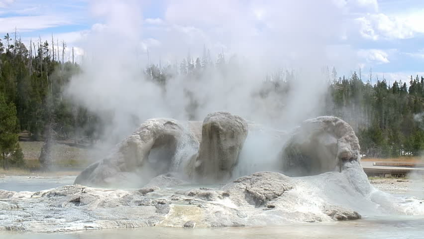 Grotto Geyser in Yellowstone National Park