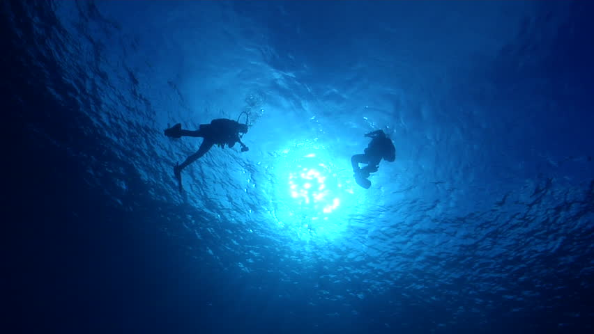 Buddy team of scuba divers swimming in bluewater, HD, UP18783 | Shutterstock HD Video #19799362