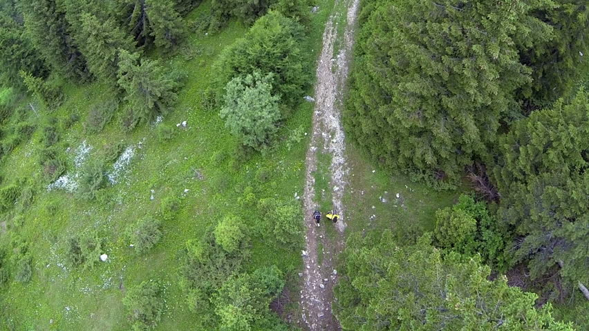 Aerial: Shot of two people hiking in the mountain forest trail.