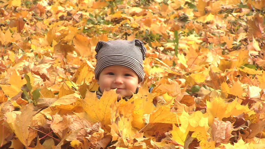 6 months boy sits surrounded by autumn leaves and one leaf falls on him
