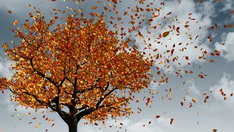 Concept Of Changing Of The Seasons From Spring To Autumn. Leaves Appear On The Tree, They Turn Yellow And Then Fall Off. 3D Animation. 4K. 3840x2160.