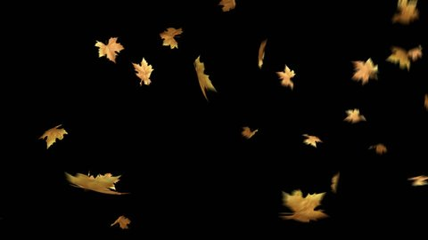 Autumn Leaves Falling With Alpha Channel Loop Clip. Can use this clip for background or overlays on your image, video project.