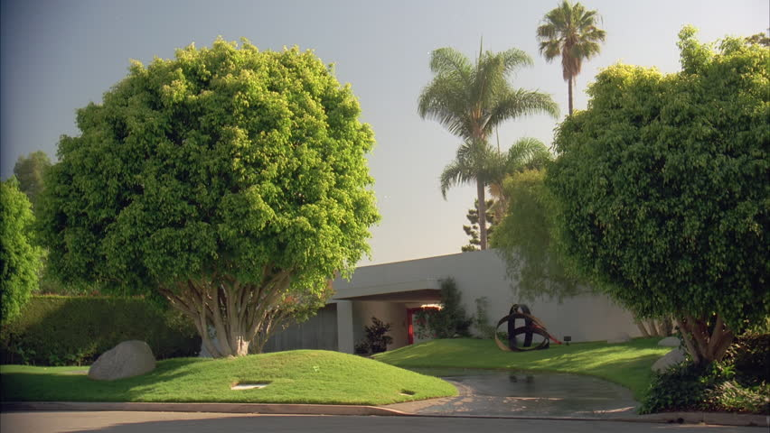 Day Tilt Down From Tree 1 Story White Stucco House Stock Footage