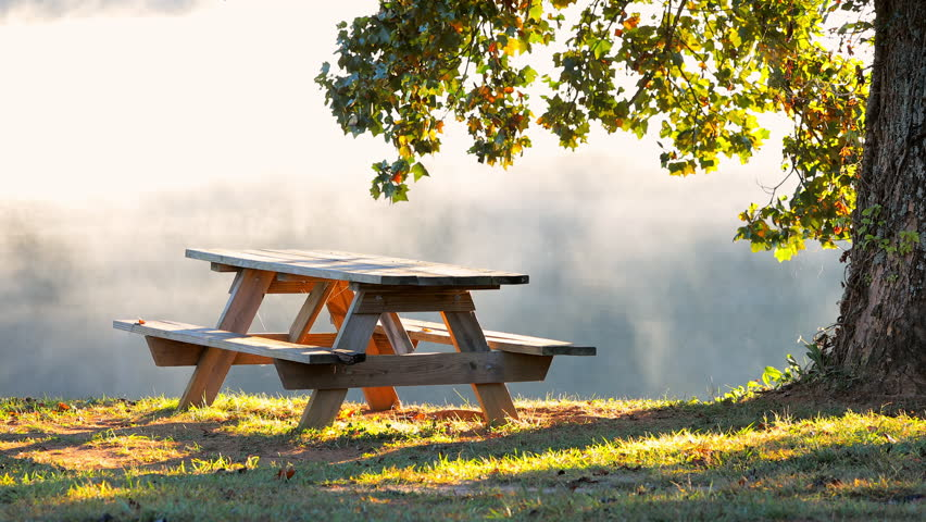 Picnic Table Background wooden picnic table stock footage video | shutterstock