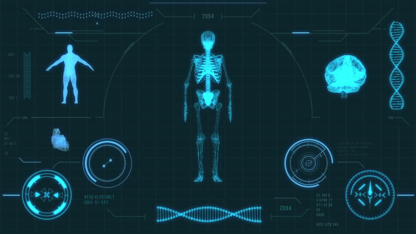 x-ray scan of human skeleton hd stock footage video 1767047, Skeleton