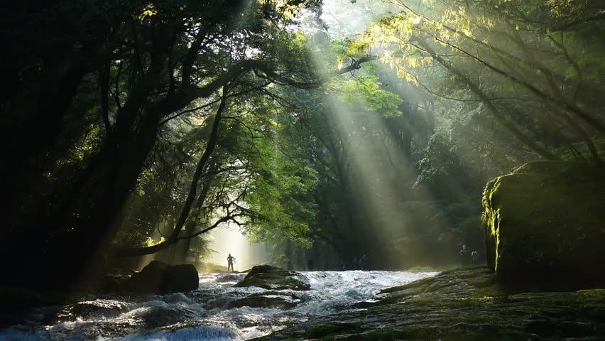 Kikuti ravine a beam of light | Shutterstock HD Video #20438002