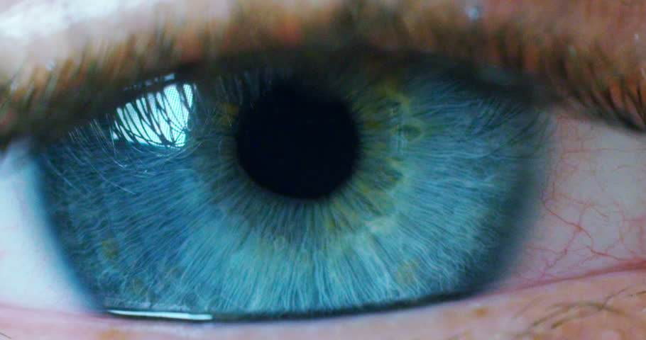 perfect blue eye macro in a sterile environment and perfect vision in resolution 6k,  concept, the vision of the future and healthy life concept. view precise and straight to the target. #20559922
