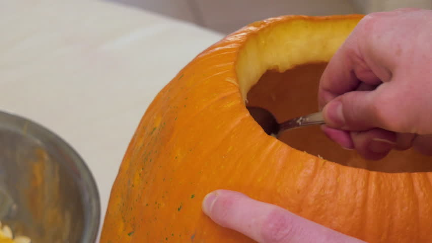 A woman scoops pepitas from a pumpkin to make a pumpkin pie or carve a Jack o Lantern.The winter squash embodies the spirit of autumn like Halloween,Thanksgiving, harvest parties & Pumpkin Spice latte