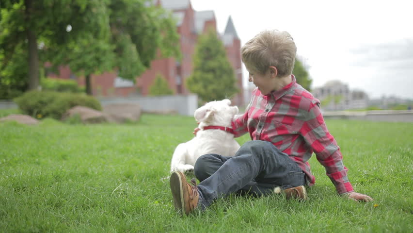 Child stroking and hugging his pet animal friend. Little boy playing with his dog in spring park. #20843002