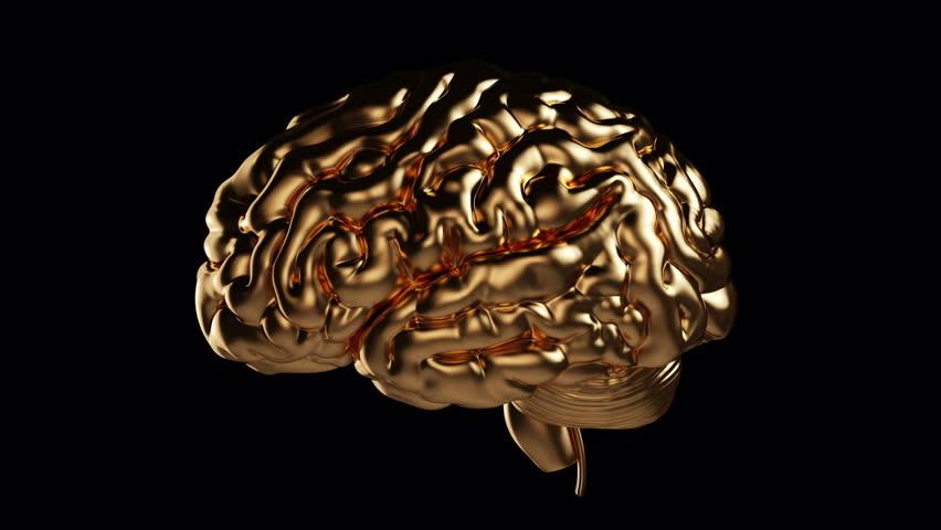 Human golden organs (brain) on black background. High resolution. 3D render | Shutterstock HD Video #20888572