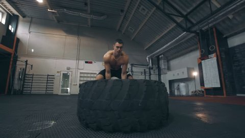 Fit muscular man doing crossfit exercises working out lifting a large rubber tyre in a gym, low angle view in a healthy lifestyle and fitness concept