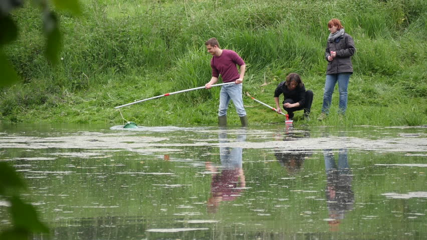 LOWER RHINE, NORTH RHINE-WESTPHALIA, GERMANY - MAY 27, 2016: Biologists of the Research Group of the University of Duisburg-Essen on an excursion. Students takes a water sample in an overgrown pond. | Shutterstock HD Video #21700072