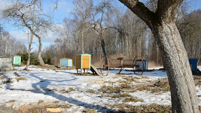 March rural garden with hives and snow   Shutterstock HD Video #2179732