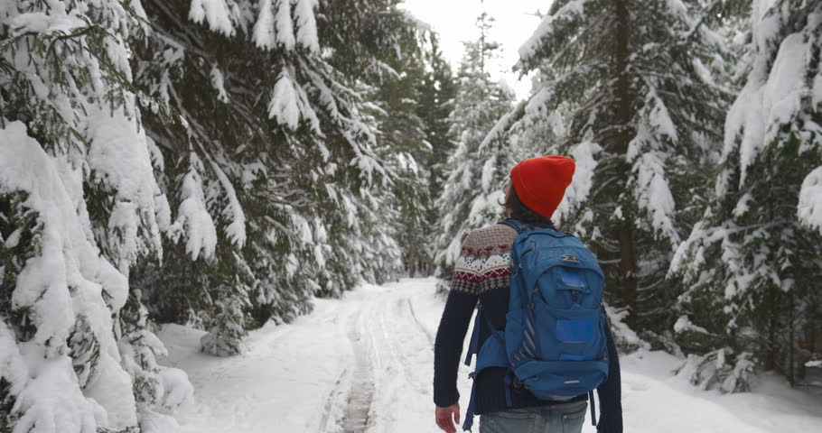 Man Hiker Walking Snow Winter Forest Traveler With Backpack Back Rear View Slow Motion 60   Shutterstock HD Video #21826972