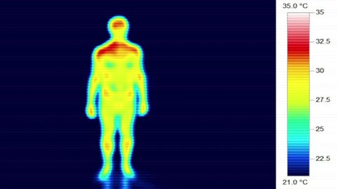 Infrared thermal male body heat scan, torso rotation 360