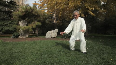 TU WS PAN Mature man doing Tai Chi in park / China