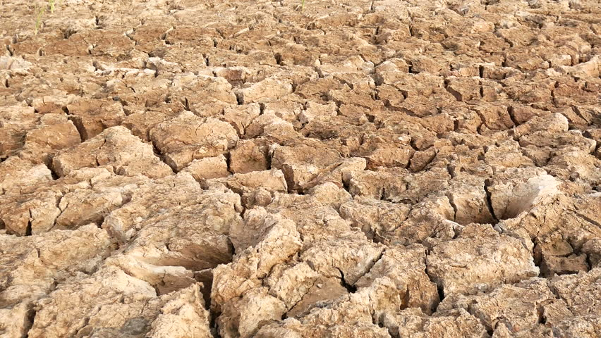 Brown surface of crack clay view from above in motion closeup dry cracked soil in a desert hd stock footage clip sciox Images