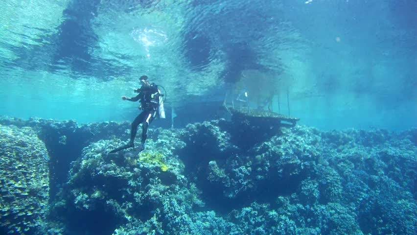 RED SEA,  SHARM EL SHEIKH, EGYPT - OCTOBER 2016: scuba diver hangs next to a coral reef and swim to the pier, Red sea, Sinai Peninsula, Egypt | Shutterstock HD Video #22126432