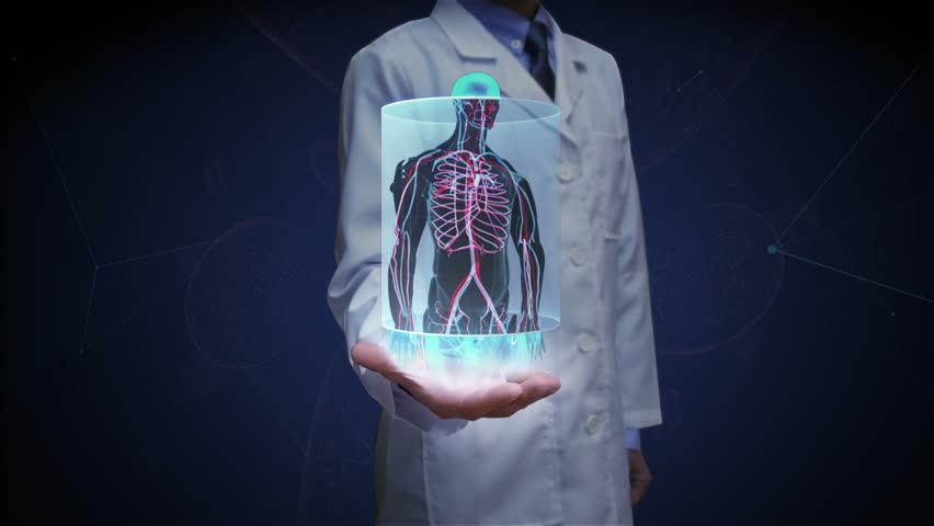 Doctor open palm, Zooming front body and scanning Human blood vessel system. Blue X-ray light.