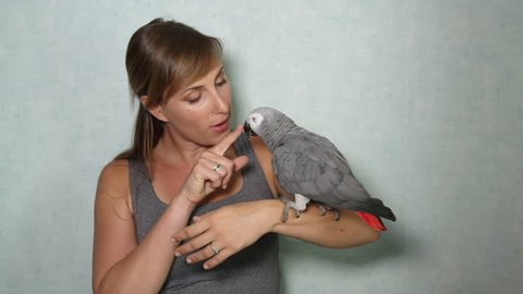 SLOW MOTION, CLOSE UP: Naughty cute African grey parrot sitting on young woman's hand, talking, giving kisses on her lips. Loving happy female owner smiling and caressing bird's sharp dangerous beak