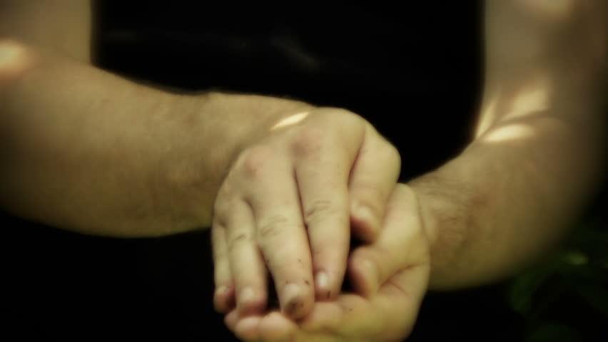 Hand holding growing seedling