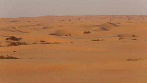 UAE - desert sand dunes