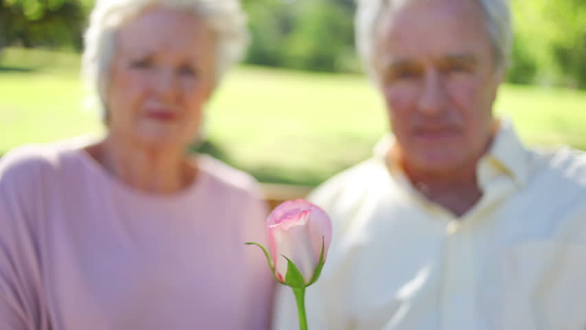 Mature woman smelling a rose while sitting with her husband in a park