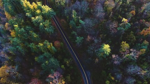 An aerial shot of a country road in the woods - autumn - 4k. Shot in upstate New York
