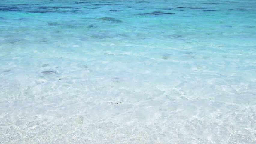 Summertime at the beach  | Shutterstock HD Video #23611432