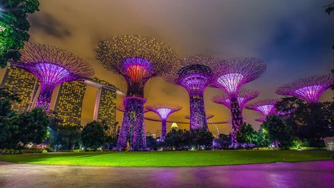 Cinemagraph, Singapore, park Gardens by the Bay with it's famous supertrees grove.