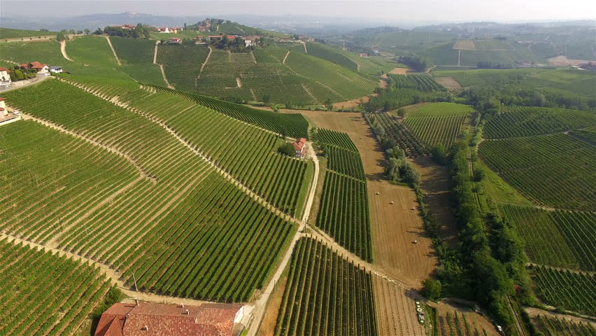 Aerial view of Italian vineyards and bales of hay. Piedmont region, Italy