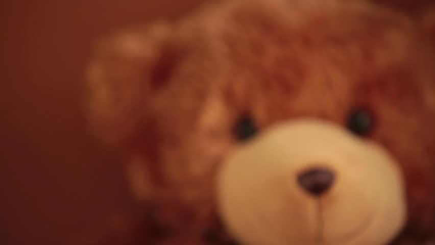 brown teddy bear soft toy rack focus, portrait cute teddy bear