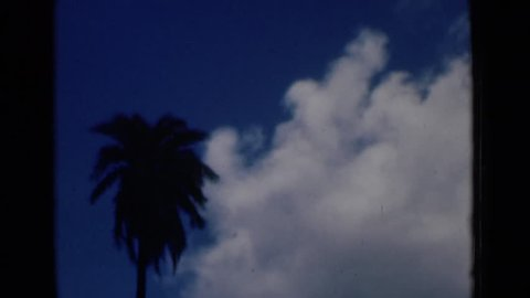 CALCUTTA INDIA 1946: palm tree on blue sky background with cloud