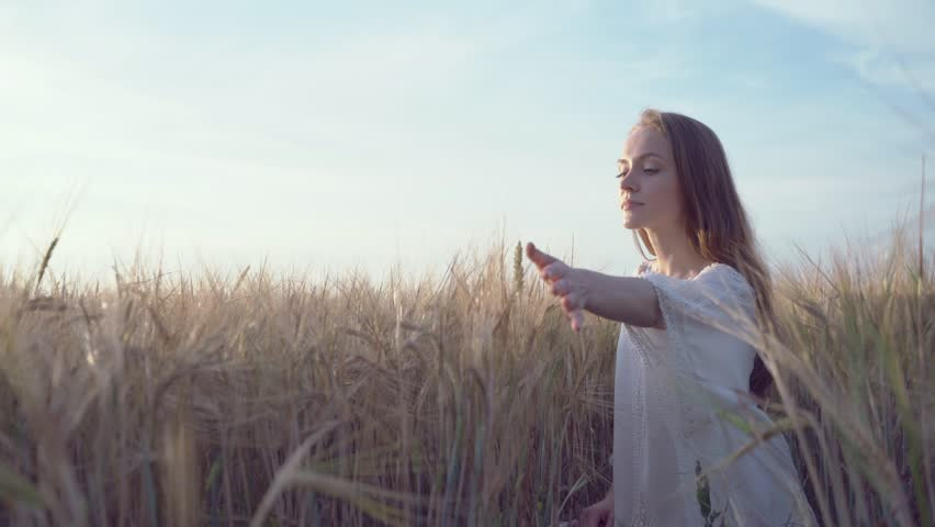 Beautiful woman in a wheat field | Shutterstock HD Video #24461912