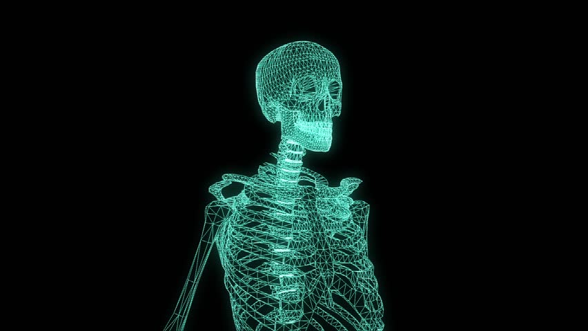 human skeleton wireframe hologram in motion. nice 3d rendering, Skeleton