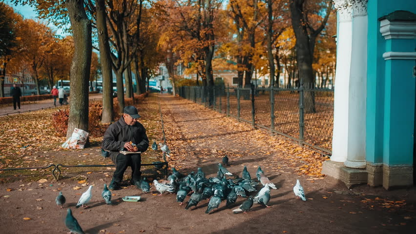 Homeless man sitting on the street and feed the pigeons