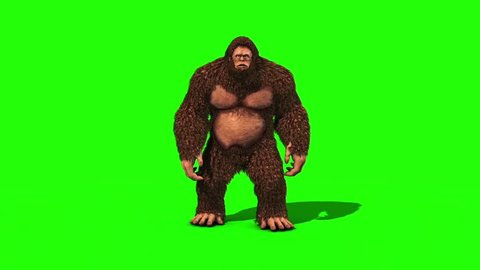 Bigfoot Sighting Attack and Die Green Screen 3D Rendering Animation