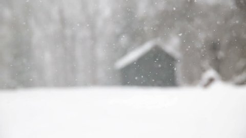 Snow falling in front of forest cabin upstate New York winter